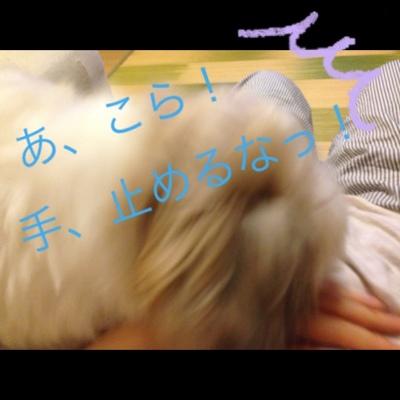 fc2blog_2013073120392886f.jpg