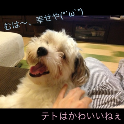 fc2blog_20130731204017c55.jpg
