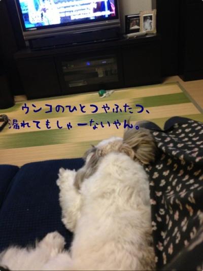 fc2blog_20131008194156da0.jpg