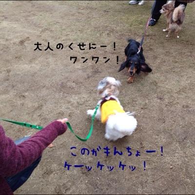 fc2blog_201310270003566dd.jpg