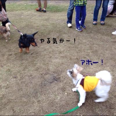 fc2blog_20131027005338e40.jpg