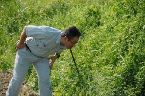 農作物成分の常識を変えた!『ピロール農法』現地調査に行ってきました⑦