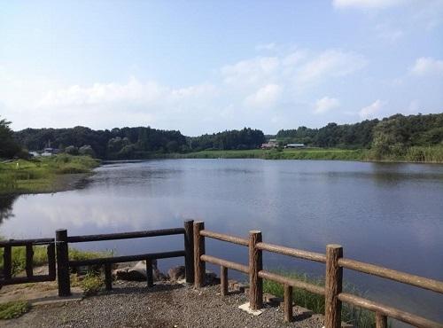<羽田沼野鳥公園>に、寄り道①
