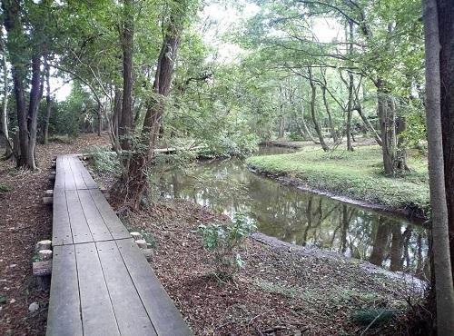 <磯川緑地公園>ちょいと散策⑥