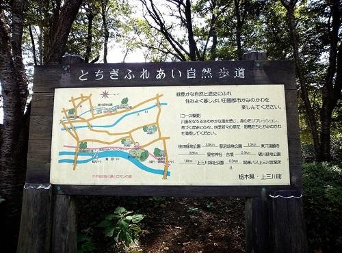 <磯川緑地公園>ちょいと散策⑬