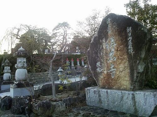 稱名寺の『シイノキ』~趣深き名木・名刹~<RT>②