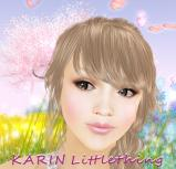 KARIN Littlething