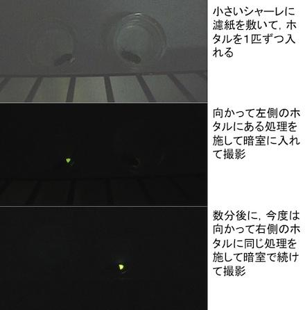 201307031032016fe.jpg