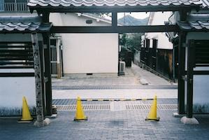 b_tamayuramore_p_0120.jpg