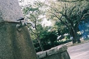 b_tamayuramore_p_0203.jpeg