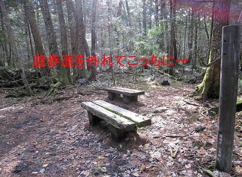 20130801194107166.jpg