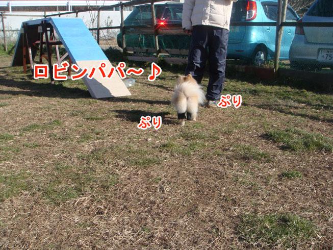 01_26_07.jpg
