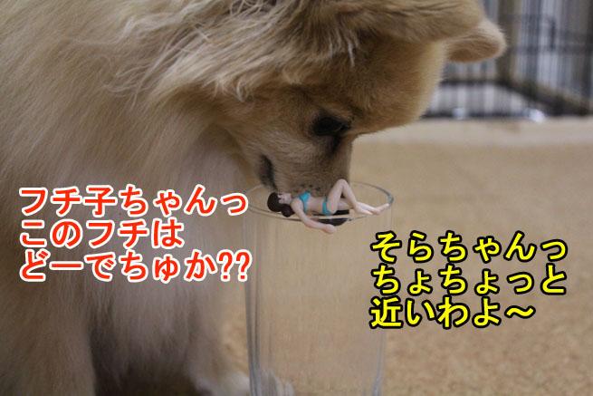 09_09_03.jpg