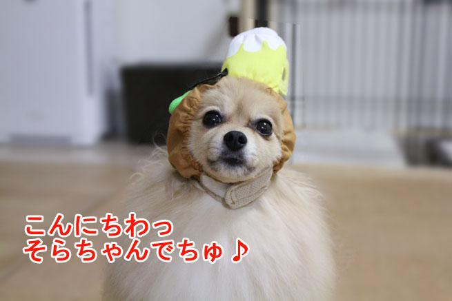 09_09_05.jpg