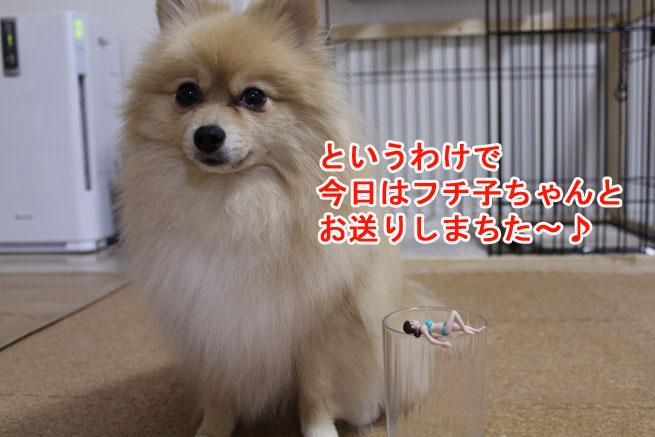 09_09_08.jpg