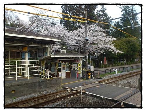 春の北鎌倉